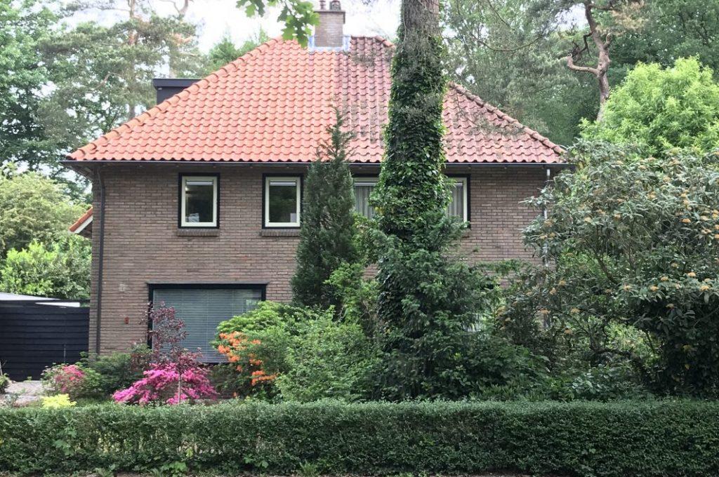 pannen dak behandeld met algen reiniging